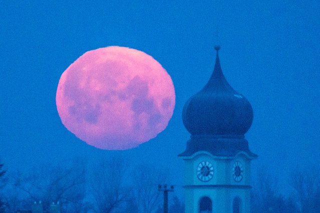 The moon sets behind the parish church of Schoenach near Regensburg, southern Germany, Wednesday morning, February 4, 2015. (Photo by Armin Weigel/AP Photo/DPA)