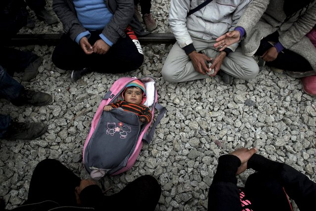 A baby is laid on the ground among stranded refugees and migrants waiting to cross the Greek-Macedonian border, near the Greek village of Idomeni, February 29, 2016. (Photo by Alexandros Avramidis/Reuters)