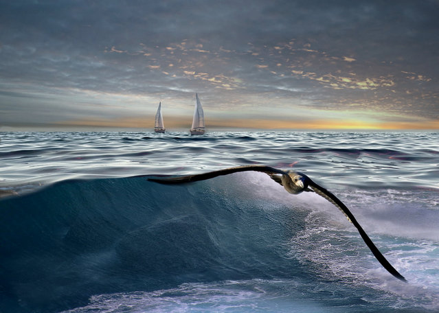 """""""Il mare"""". (Photo by Giovanni Ambrosioni)"""