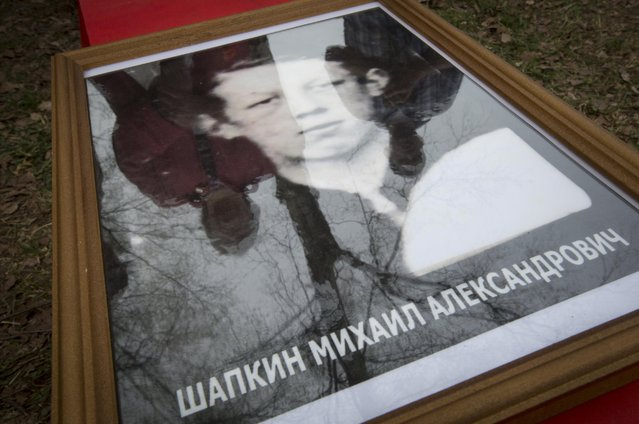 In this photo taken Thursday, May 7, 2015 photo, relatives of Soviet soldier Mikhail Shapkin killed in 1942, are reflected in a glass of his portrait during a reburial ceremony at the Sinyavino Heights memorial near the village of Sinyavino, 50 km (31 miles) east of  St. Petersburg, Russia. (Photo by Dmitry Lovetsky/AP Photo)