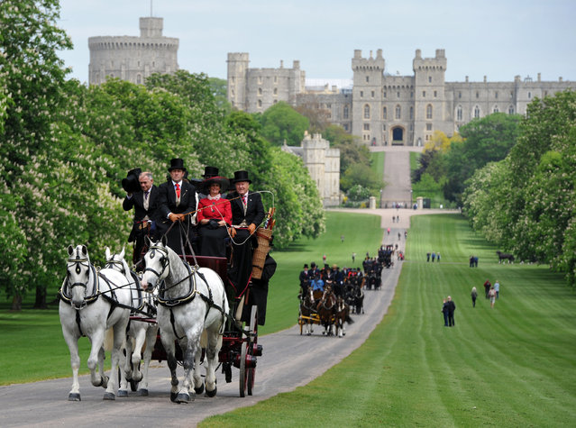 """Competitors take part in a coaching marathon along the """"Long Walk"""" during the third day of the Royal Windsor Horse Show at Windsor Castle, Windsor, England, Friday, May 15, 2015.  (Steve Parsons/AP Photo/PA Wire)"""
