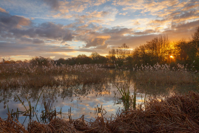 Sunrise at a Lincolnshire Wildlife Trust nature reserve in Barton-upon-Humber, North Lincolnshire, UK. (Photo by Lee Beel/Alamy Stock Photo)