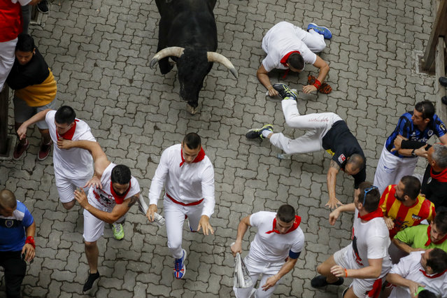 """Revellers run with Puerto de San Lorenzo's fighting bulls before entering the bullring during the second day of the San Fermin Running of the Bulls festival on July 07, 2019 in Pamplona, Spain. The annual Fiesta de San Fermin, made famous by the 1926 novel of US writer Ernest Hemmingway entitled """"The Sun Also Rises"""", involves the daily running of the bulls through the historic heart of Pamplona to the bull ring. (Photo by Pablo Blazquez Dominguez/Getty Images)"""