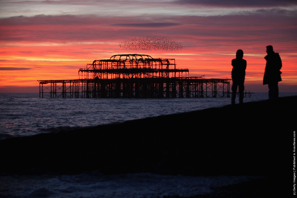 Starlings Mark The Winter Solstice in Brighton
