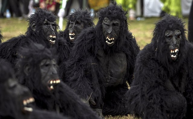 """People dressed as gorillas perform during the annual mountain gorilla naming ceremony, also known as """"Kwita Izina"""", in Kinigi town, Rwanda, September 5, 2015. Some 24 baby gorillas were named as the country continues to raise awareness about the importance of preserving the gorillas, already declared an endangered species. (Photo by Edward Echwalu/Reuters)"""
