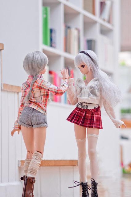 Dolls. Touch. (Suzuhico)