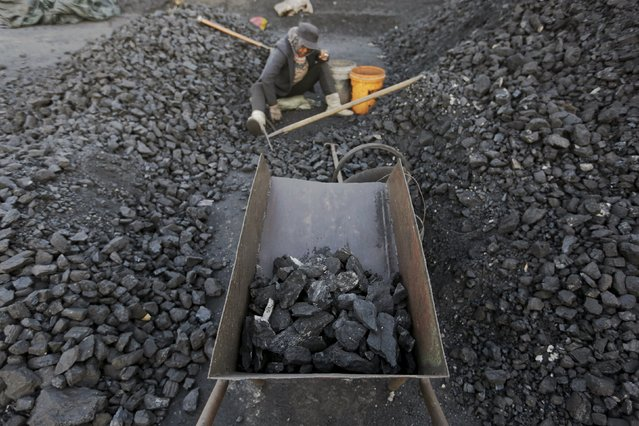 A villager selects coal at local businessman Sun Meng's small coal depot near a coal mine of the state-owned Longmay Group on the outskirts of Jixi, in Heilongjiang province, China, October 23, 2015. (Photo by Jason Lee/Reuters)