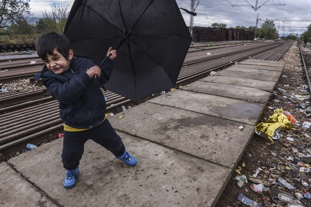 A child holds an umbrella as he waits for a train with other migrants and asylum seekers after crossing the Macedonian-Serbian border near the town of Bujanovac on October 23, 2015. (Photo by Armend Nimani/AFP Photo)
