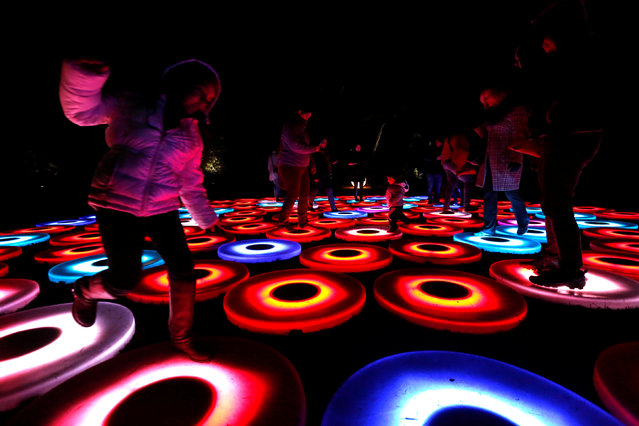 """People interact with """"Luminous Lawn"""" which is part of the exhibit """"Enchanted: Forest of Light"""" at Descanso Gardens in La Canada Flintridge, California U.S., December 9, 2016. (Photo by Mario Anzuoni/Reuters)"""