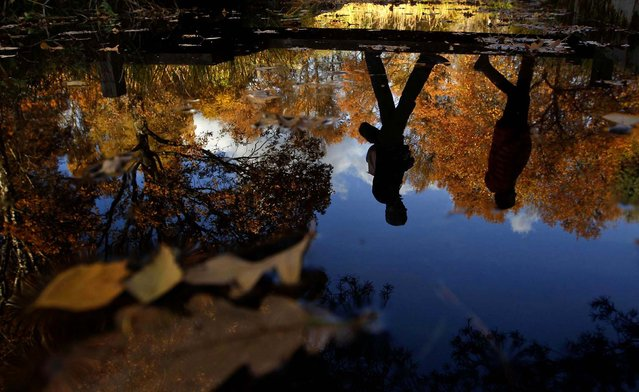 People are reflected in water as they cross a bridge in a park in Moscow, October 12, 2013. (Photo by Maxim Shemetov/Reuters)