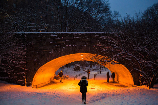 People walk amid a snowfall in Central Park during a Winter storm on January 7, 2017 in New York. (Photo by Eduardo Munoz Alvarez/AFP Photo)