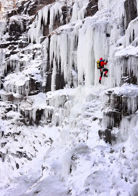 Ice climber Howie Mievogel uses ice tools and crampons to ascend a frozen waterfall on the cliffs in Riegelsville, Pennsylvania, near the Delaware River, on January 4, 2014. (Photo by Steve Klaver/Associated Press)