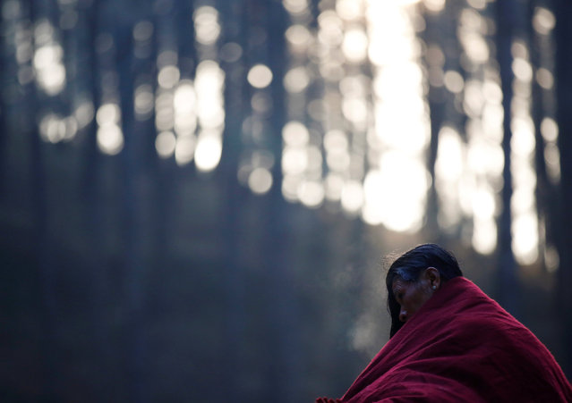 A devotee covers herself with a shawl after taking a bath in the woods of Changu Narayan in Bhaktapur, Nepal February 8, 2017. (Photo by Navesh Chitrakar/Reuters)