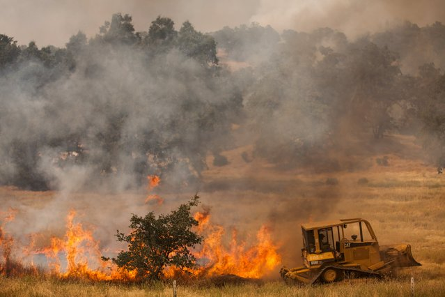 A bulldozer battles a spot fire at the Rocky Fire in Lake County, California July 30, 2015. (Photo by Max Whittaker/Reuters)