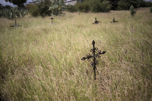 Crosses mark graves amid overgrown grass at Corazon de Jesus cemetery in Maracaibo, Venezuela, November 21, 2019. Death has become an overwhelming financial burden for many of Venezuela's poorest, who already struggle to find dignity in life. They scrape together food and shelter needed to get through each day. So a relative's death becomes the breaking point in a country where most earn a minimum wage of roughly $3 a month. Some overcome the financial burden of a relative's death by renting caskets, a cheaper option than buying. Others turn to amateur morticians, who embalm bodies at home and convert wooden furniture into coffins. When families can't afford headstones at the Maracaibo public cemetery, the rain erases any sign of a grave. (Photo by Rodrigo Abd/AP Photo)