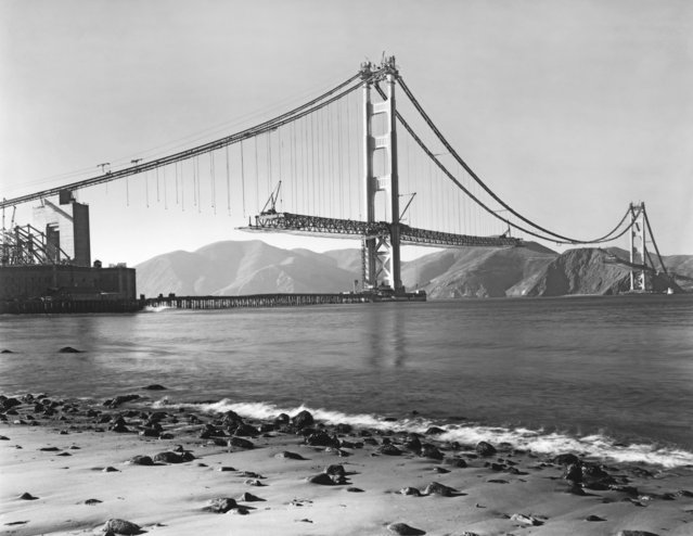 View from Crissy Field in the Presidio of the construction of the Golden Gate Bridge with the roadbed being installed, San Francisco, California, 1937. (Photo by Underwood Archives/Getty Images)