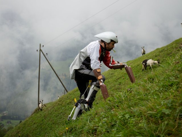 Thomas Thwaites Tried To Live As A Goat