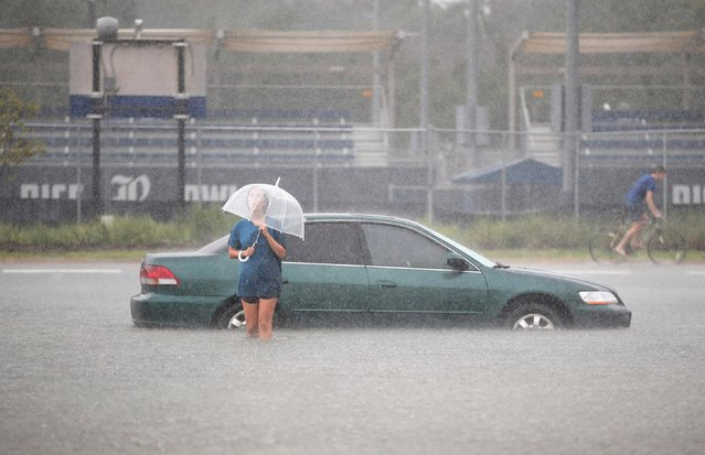 Mari Zertuche walks through a flooded parking lot on the campus of Rice University afer it was inundated with water from Hurricane Harvey on August 27, 2017 in Houston, Texas. Harvey, which made landfall north of Corpus Christi late Friday evening, is expected to dump upwards to 40 inches of rain in areas of Texas over the next couple of days. (Photo by Scott Olson/Getty Images)