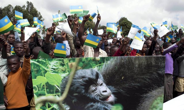 "People wave the Rwandan national flag as they follow proceedings at the annual mountain gorilla naming ceremony, also known as ""Kwita Izina"", in Kinigi town, Rwanda, September 5, 2015. (Photo by Edward Echwalu/Reuters)"