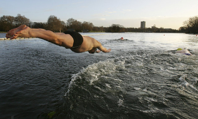 Saturday morning Serpentine Lido swimmers brave cold waters of 4 degrees celsius on January 5, 2008 in London. The swimmers meet every Saturday morning of the year regardless of weather conditions. (Photo by Cate Gillon)