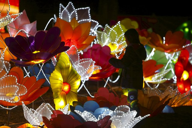 A visitor takes photos while attending the Dandenong Festival of Lights in the suburb of Dandenong in Melbourne, Australia, September 23, 2015. (Photo by Darrin Zammit Lupi/Reuters)