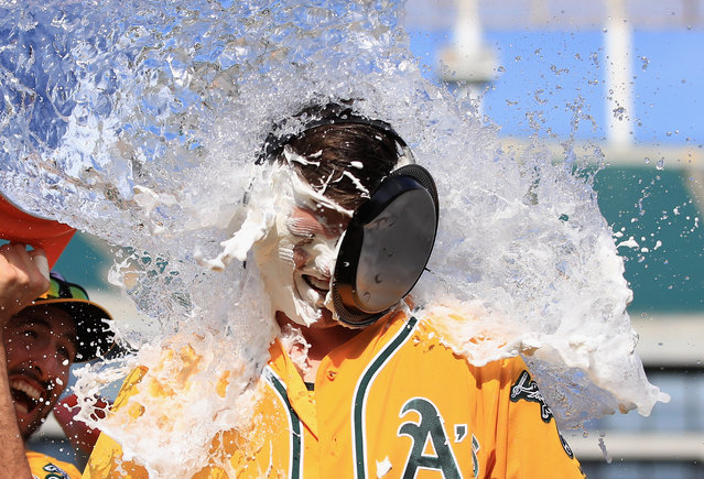 Ryon Healy #25 of the Oakland Athletics is covered in water by Adam Rosales #16 after he hit a walk-off home run in the ninth inning against the Detroit Tigers at Oakland Alameda Coliseum on May 7, 2017 in Oakland, California. (Photo by Ezra Shaw/Getty Images)