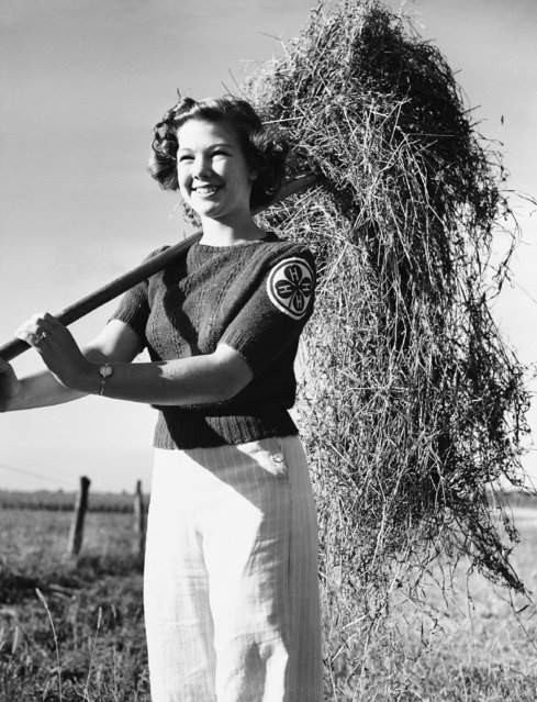 Typical American farm girl is Ruth, who proudly wears her 4-H emblem sewn on her sweater in Seward, Illinois on October 2, 1942. A high school sophomore, she is a member of the chorus and Girls' Athletic Association. Enrolled in a 4-H flower arrangement project, she keeps the home brightened and the flower beds blooming. She also studies the violin. (Photo by AP Photo)