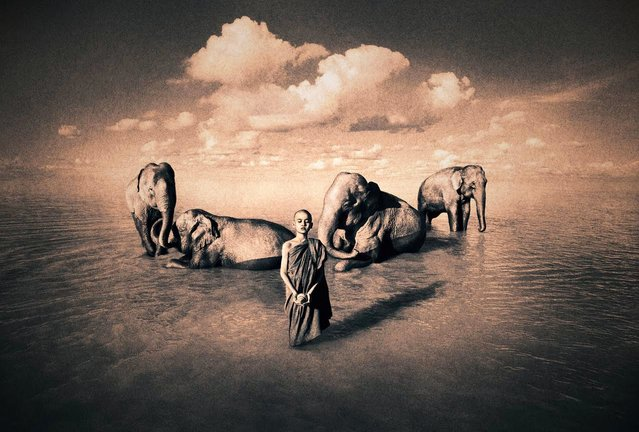 """""""Ashes and Snow"""" by Gregory Colbert"""
