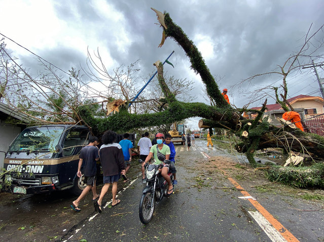 Filipino villagers maneuver under a toppled tree in the typhoon-hit town of Tigaon, Camarines Sur, Philippines, 01 November 2020. Super Typhoon Goni, with winds forecasted to reach 249 kilometers per hour, made landfall in the provinces of Albay and Camarines sur, according to the local weather bureau. (Photo by Francis R. Malasig/EPA/EFE)