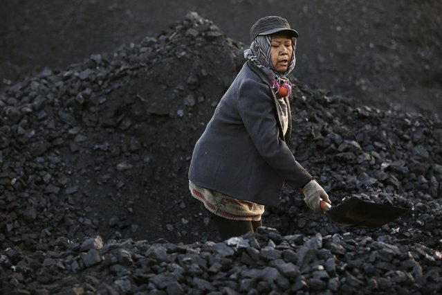 A villager moves coal at local businessman Sun Meng's small coal depot near a coal mine of the state-owned Longmay Group on the outskirts of Jixi, in Heilongjiang province, China, October 23, 2015. (Photo by Jason Lee/Reuters)