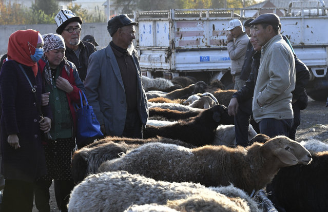Sellers and buyers of sheeps talk to each other at the Moscow market in Belovodskoye village, about 45 kilometers (28 miles) southwest of Bishkek, Kyrgyzstan, Sunday, October 18, 2020. Kyrgyzstan, one of the poorest countries to emerge from the former Soviet Union, where political turmoil has prompted many people to have little respect for authorities, whom they see as deeply corrupt. (Photo by Vladimir Voronin/AP Photo)