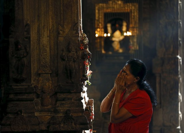 A Tamil devotee prays during the Thai Pongal harvest festival at a temple in Colombo January 15, 2016.The Tamil festival of Thai Pongal is a thanksgiving ceremony in which the farmers thank the spirits of nature, the sun and the farm animals for their assistance in providing a successful harvest. (Photo by Dinuka Liyanawatte/Reuters)