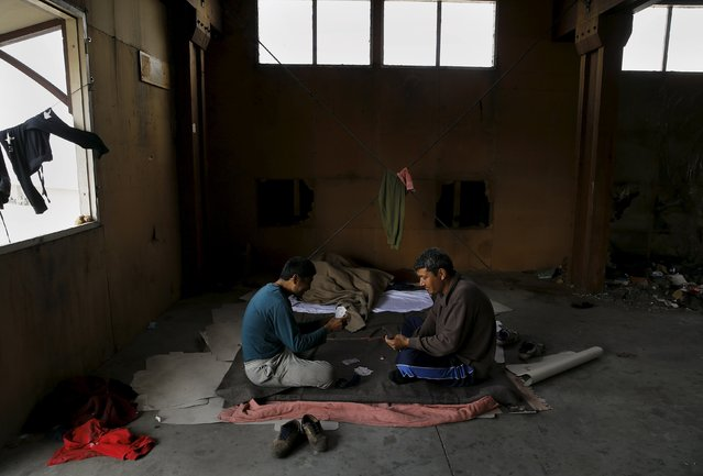 Afghan immigrants play cards inside a wood factory across the street from a ferry terminal in the western Greek town of Patras April 28, 2015. (Photo by Yannis Behrakis/Reuters)