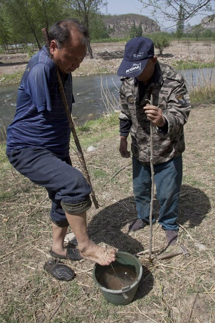 In this April 23, 2015 photo, Jia Wenqi, left, uses his foot to lift a bucket water as his friend Jia Haixia stands nearby in Yeli village near Shijiazhuang city in northern China's Hebei province. (Photo by Helene Franchineau/AP Photo)