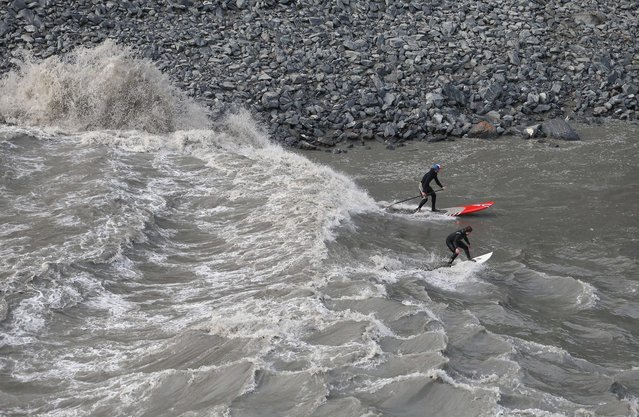 A group of surfers ride the Bore Tide at Turnagain Arm on July 15, 2014 in Anchorage, Alaska. Alaskas most famous Bore Tide, occurs in a spot on the outside of Anchorage in the lower arm of the Cook Inlet, Turnagain Arm, where wave heights can reach 6-10 feet tall, move at 10-15 mph and the water temperature stays around 40 degrees farenheit. This years Supermoon substantially increased the size of the normal wave and made it a destination for surfers. (Photo by Streeter Lecka/Getty Images)