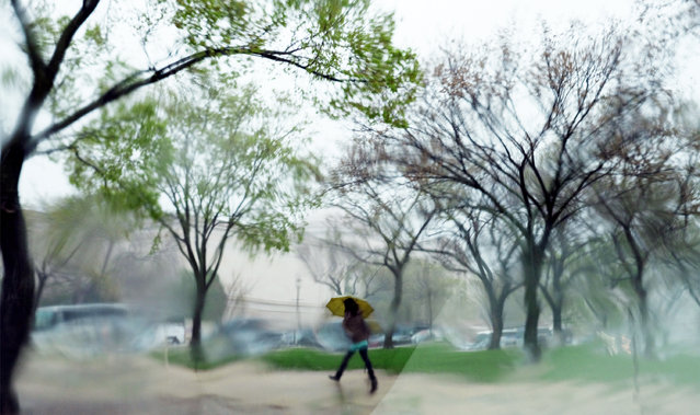 A pedestrian makes her way through a steady downpour in Washington, DC on April 6, 2017. The landscape is distorted by rain on a window. (Photo by Bonnie Jo Mount/The Washington Post)