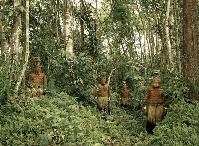"""Guardians of the Forest: Deep in the Colombian Amazon, Yucuna indians stand dressed in traditional tribal attire for the Baile del Muñeco, or puppet dance, a celebration of the abundance of the Chontaduro fruit. While traditional indigenous customs are fast being lost throughout the Amazon jungle, here, far down the Caqueta river and few miles from the Brazilian border, traditions are still very much intact. The costumes are still made entirely from natural materials, predominantly tree bark, during this three day festival"". (Photo and comment by Piers Calvert/National Geographic Photo Contest via The Atlantic)"
