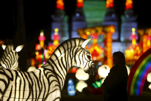 A visitor looks at a display at the Dandenong Festival of Lights in the suburb of Dandenong in Melbourne, Australia, September 23, 2015. (Photo by Darrin Zammit Lupi/Reuters)