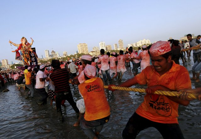 Devotees pull an idol of Hindu elephant god Ganesh, the deity of prosperity, for immersion into the Arabian Sea on the last day of the Ganesh Chaturthi festival in Mumbai, India, September 27, 2015. (Photo by Danish Siddiqui/Reuters)