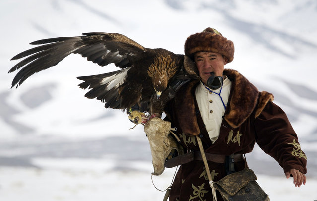 A Kazakh hunter walks with his tamed golden eagle during an annual hunting competition in Chengelsy Gorge, some 150 km (93 miles) east of Almaty February 22, 2013. (Photo by Shamil Zhumatov/Reuters)