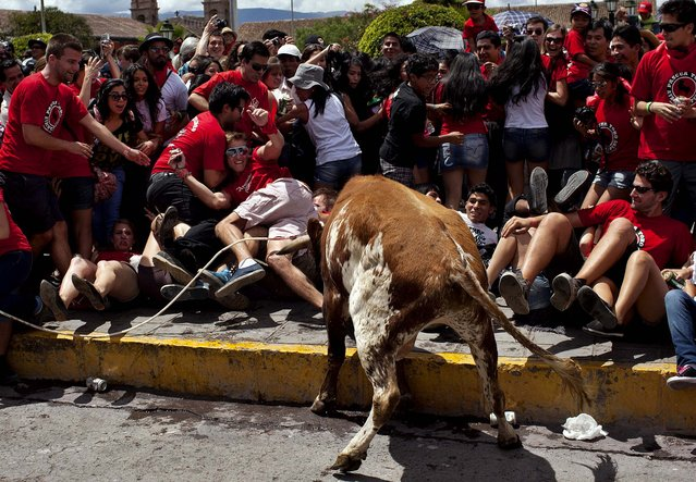 "Revelers move away to avoid being tossed by a bull during the ""Jala Toro"" or ""Pull the Bear"" celebration in downtown Ayacucho, Peru, Saturday, March 30, 2013. The Jala Toro is a ""running of the bulls"" celebration, similar to Spain's Encierro, where bulls are let loose and revelers run around them, except that in Ayacucho's Holy Week, they are led by horsemen called ""Morocuchos"", the cowboys of the Peruvian Andes. (Photo by AP Photo/Rodrigo Abd)"
