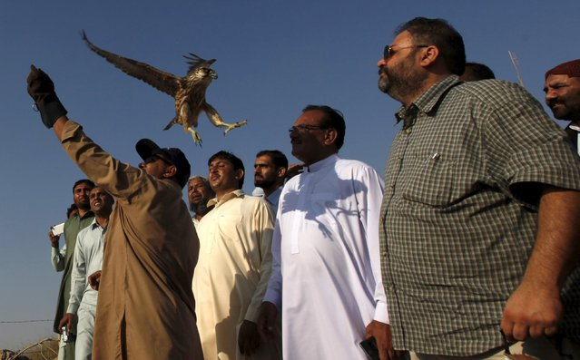 An official from Pakistan Coast Guard (PCG) releases one of the seven illegally captured falcons, which were recovered during a spot check while being smuggled, during a ceremony at Hawks bay area in Karachi, Pakistan, October 17, 2015. A PCG official said all seven falcons were released. (Photo by Akhtar Soomro/Reuters)