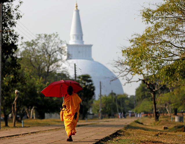 A Buddhist nun walks along a path as a stupa is seen at a temple in Anuradhapura, Sri Lanka October 16, 2016. (Photo by Dinuka Liyanawatte/Reuters)