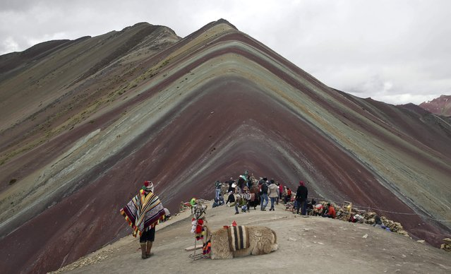 In this March 2, 2018 photo, an Andean man rests with his llama while tourists take in the natural wonder of Rainbow Mountain in Pitumarca, Peru. Tourists gasp for breath as they climb for two hours to the 16,404-foot (5,000-meter) peak in the Peruvian Andes, but stunned by the magical beauty that unfurls before them. (Photo by Martin Mejia/AP Photo)