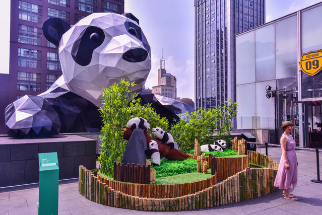 "Lego sculptures of giant pandas created by New York-based artist Sean Kenney are on display during the ""Nature Connects"" Lego exhibition at the Chengdu International Finance Square (IFS) in downtown Chengdu city, Sichuan province, China on June 24, 2018. Nature Connects is an award-winning, record-breaking exhibition now touring North America, Asia, and Europe. Created with over one million LEGO pieces, this show features hundreds of sculptures built with LEGO bricks by New York artist Sean Kenney. Now the ""Nature Connects"" Lego exhibit is coming to China. 27 large-scale Lego sculptures will be installed at Chengdu International Finance Square from Jun.21 to Aug.31, 2019, as part of the China debut of touring exhibition. (Photo by Imaginechina/Rex Features/Shutterstock)"