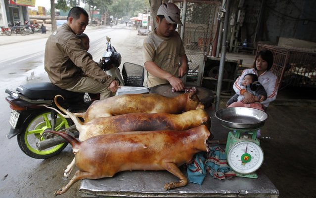 A vendor (C) cuts slaughtered dogs for sale at his roadside stall in Duong Noi village, outside Hanoi December 16, 2011. While animal rights activists have condemned eating dog meat as cruel treatment of the animals, it is still an accepted popular delicacy for some Vietnamese, as well in some other Asian countries. (Photo by Reuters/Kham)