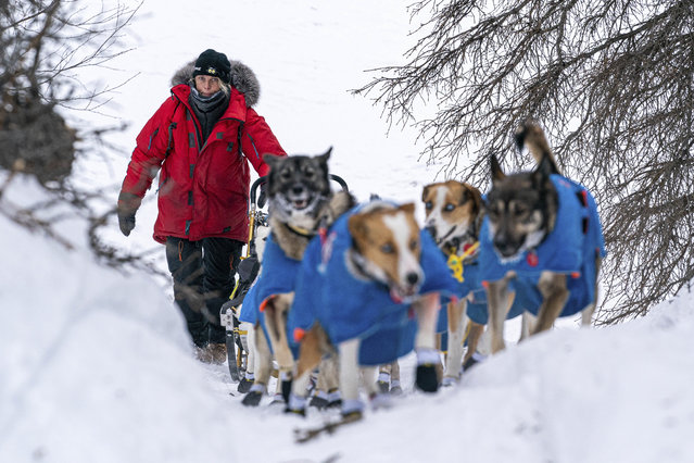 Mille Porsild mushes up a hill before Finger Lake during the Iditarod Dog Sled Race in Alaska, U.S. March 14, 2021. (Photo by Loren Holmes/ADN/Pool via Reuters)