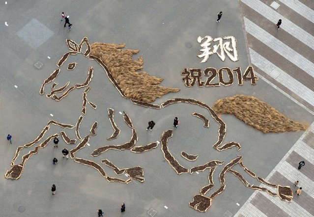 This aerial photo showing a 20-metre-tall and 30-metre-wide picture, made from pine cones, of a horse is displayed to celebrate the Year of the horse at the Hitachi Beach park in Hitachinaka city, Ibaraki prefecture, some 100-kilometres north of Tokyo on January 3, 2014. Visitors could see the picture, made up from around 30,000 pine cones collected in the park, from a nearby 65-metre-tall ferris wheel. (Photo by Toshifumi Kitamura/AFP Photo)