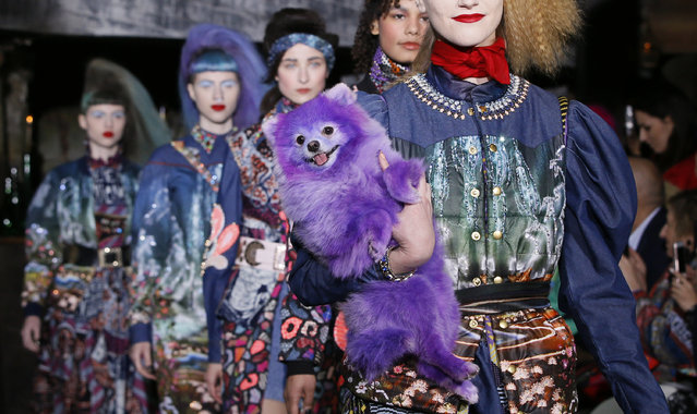 A dog accompanies models who present creations by Indian designer Manish Arora as part of his Fall/Winter 2016/2017 women's ready-to-wear collection in Paris, France, March 3, 2016. (Photo by Gonzalo Fuentes/Reuters)