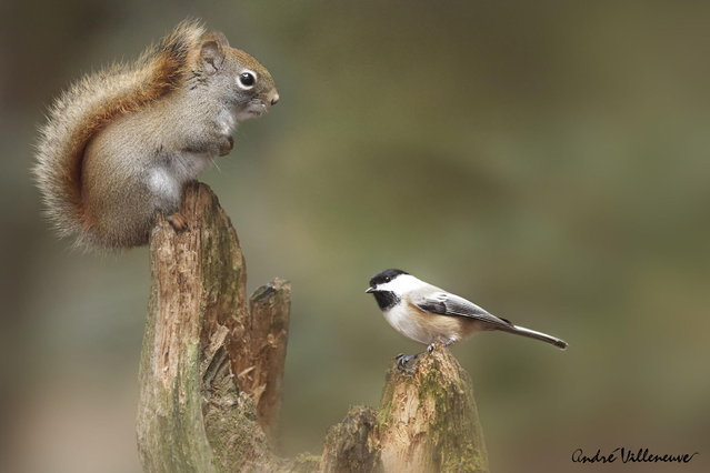 """Sharing a point of view"". (Photo by Andre Villeneuve)"